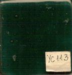 YC113 TINTA PARA VIDRO IMPORTADA VERDE- 100G
